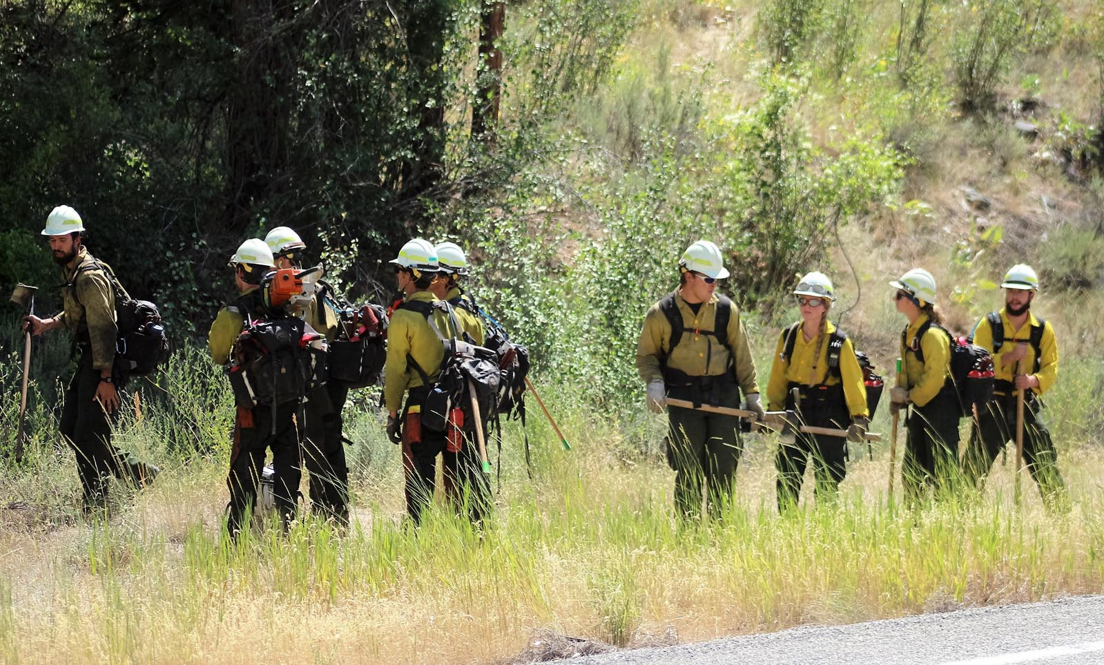 Firefighters just arriving on scene prepare to deploy along the fire line.